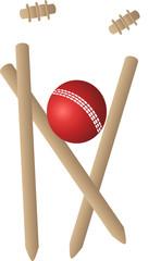 cricket wickets ball