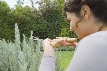 Woman trimming plants