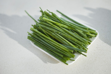 Close-up of chive leaves in a tray
