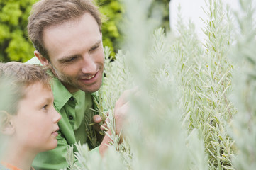 Man and his son examining plants