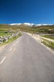 road to snow mountain poster