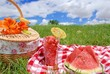 Picnic on Meadow at Summer