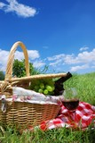 Picnic on Meadow