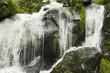 Wasserfall - Triberg - Schwarzwald