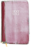Old tattered Holy Bible . Clipping path included.