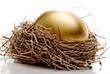 Golden Egg - 16051409