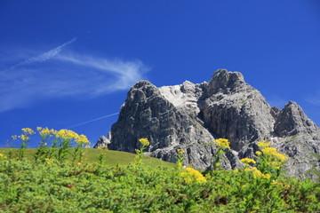 Schroffer Gipfel und grüne Wiese