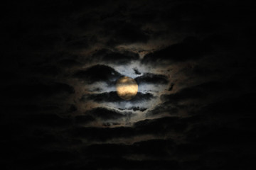 Moonlight among clouds