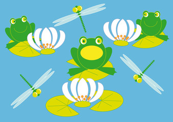 frog and lilies