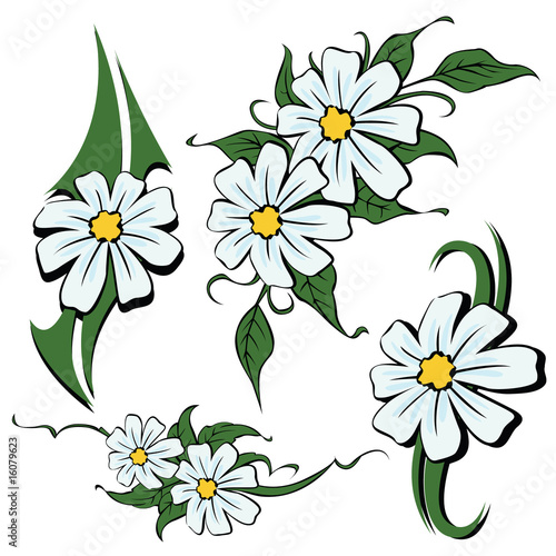 Selection of sketches tattoo tribal - camomile flowers