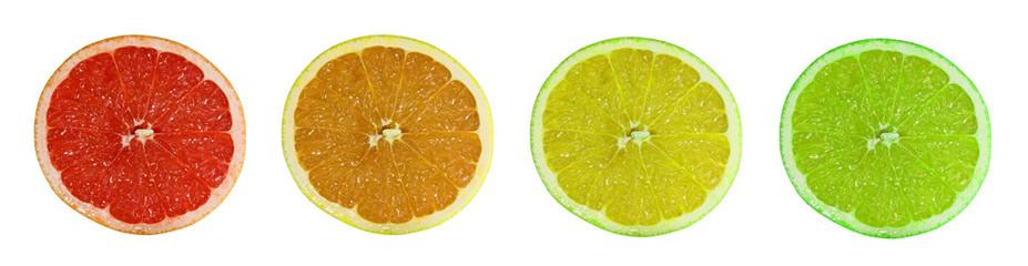 citricos 9