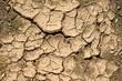 Trockene, rissige Erde