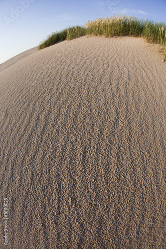 Dunes background
