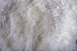 Textile structure, artifical fur, close-up, full frame