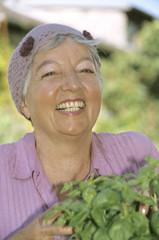 lächeln Frau, Seniorin, mit Basilikum Pflanzen, close-up