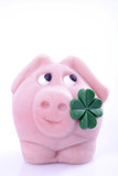 Lucky pig with four-leafed clover, close-up