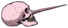 Kłamcą czaszki