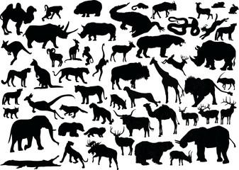 huge set of animals