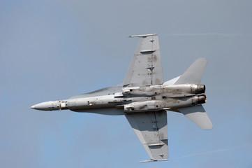 F-18 Hornet military jet