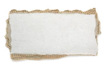 Torn Blank Cardboard