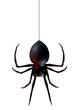 spider - 16168642