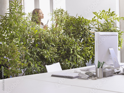 Businesswoman pruning overgrown plants in office