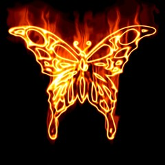 Butterfly surrounded by fire on a white background