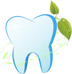 Tooth with a mint branch