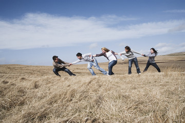 Teenage friends pulling each other in field