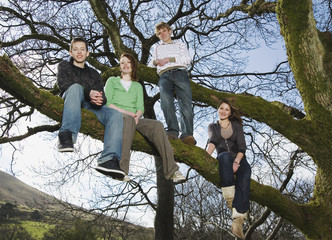 Teenage friends sitting on tree branches