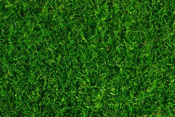 texture de fond en gazon vert - green ou pelouse tondue