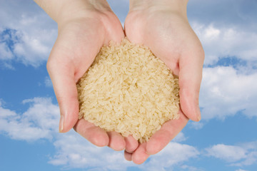 Rice in woman's hands on the blue sky with clouds