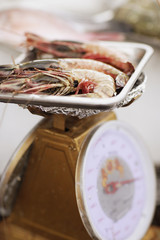 Fresh shrimp on kitchen scale