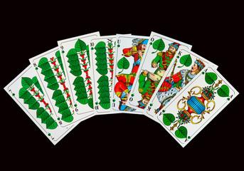 Bayerische Schafkopfkarten -Grün