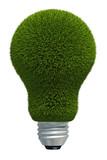 Virtual grass bulb poster