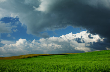 Beautiful Clouds over green fields