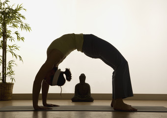 Yoga Highlights