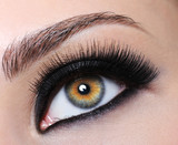 Female eye with black long eyelashes poster