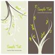 modern and elegant floral greeting cards