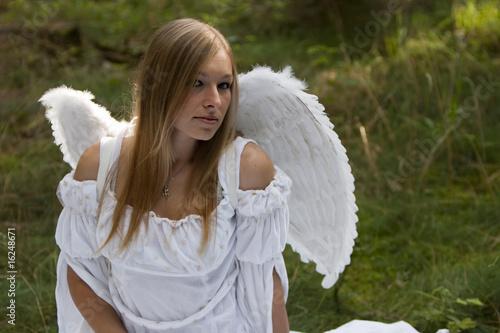 engel lady - 16248671