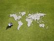 Businessman using laptop near world map made of rocks