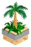 Palm Isometric poster