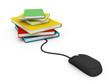 online information access concept