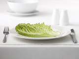 Close up of lettuce on plate