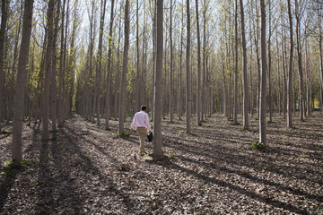 Businessman walking in forest