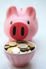 Feeding a piggy bank with euro coins