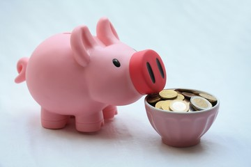 Feeding a piggy bank
