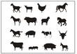 Tiere der Landwirtschaft