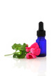 Geranium Flower Essence