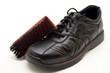 Schuh mit Bürste
